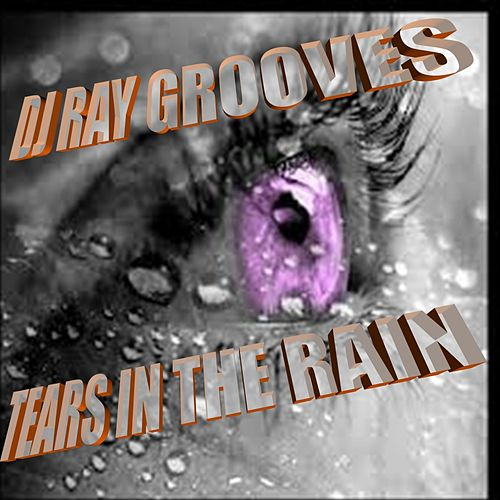 Tears In The Rain by DJ Ray Grooves