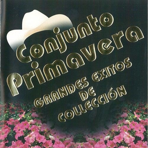 Play & Download Grandes Exitos De Collecion by Conjunto Primavera | Napster