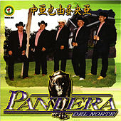 Play & Download Razon Para Vivir by Pantera Del Norte | Napster