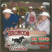 Play & Download Mi Borrachera Tololoche by Los Broncos De Cosala | Napster