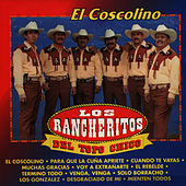 Play & Download El Coscolino by Los Rancheritos Del Topo Chico | Napster