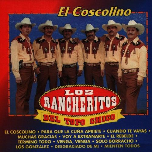 Play & Download El Coscolino by Los Rancheritos Del Topo Chico | Napster