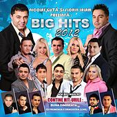 Big Hits 2012 von Various Artists