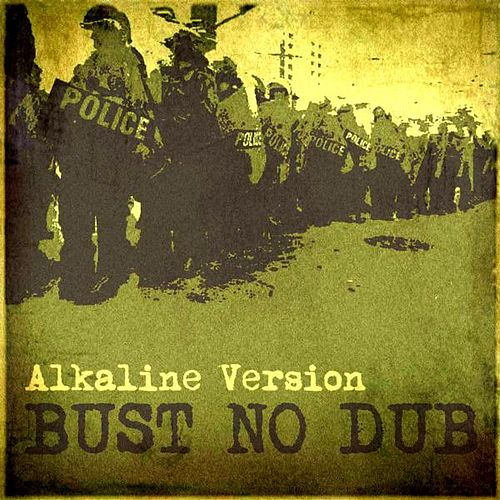 Bust No Dub (Alkaline Version) [feat. Willi Williams] by Big Sugar