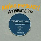 Raving Pop Blast! A Tribute To The Groove Farm by Various Artists