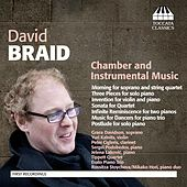 Braid: Chamber and Instrumental Music by Various Artists
