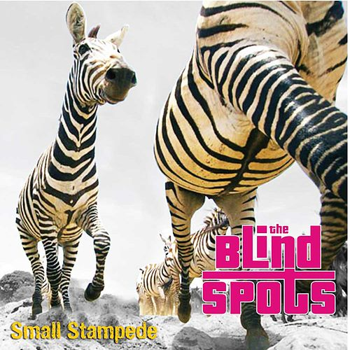Play & Download Small Stampede - EP by The Blind Spots | Napster