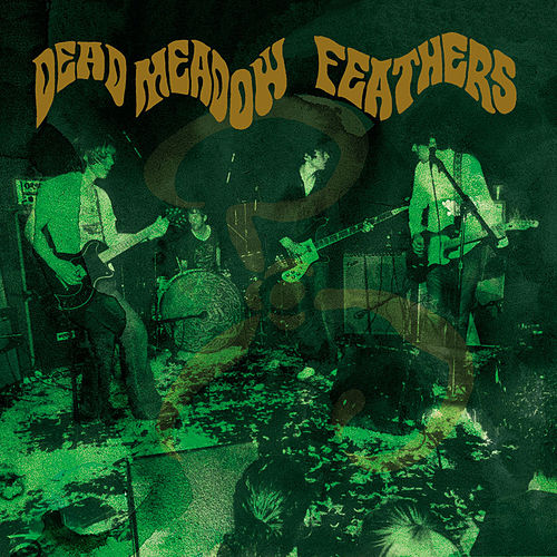Feathers by Dead Meadow