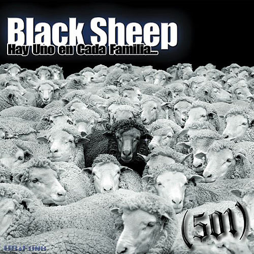 Play & Download Black Sheep by 501 | Napster