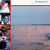 Days Of Nothing by Chokebore