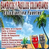 Bambucos y Pasillos Colombianos de Estudiantina Fuentes