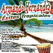 Play & Download Éxitos Tropicales by Armando Hernandez | Napster