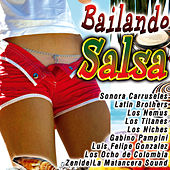 Play & Download Bailando Salsa by Various Artists | Napster