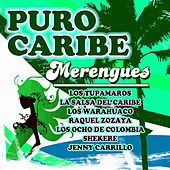 Play & Download Puro Caribe - Merengues by Various Artists | Napster