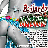 Bailando Vallenatos by Various Artists