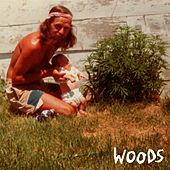Find Them Empty by Woods
