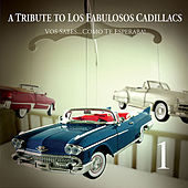 Play & Download A Tribute to Los Fabulosos Cadillacs (Vos Sabes) by Various Artists | Napster