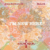 I'm New Here by Jesse Boykins III