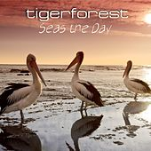 Play & Download Seas the Day by Tigerforest | Napster
