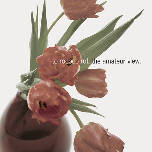 Play & Download The Amateur View (Deluxe Edition) by To Rococo Rot | Napster