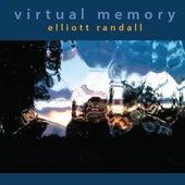 Virtual Memory by Elliott Randall