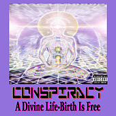 Play & Download A Divine Life - Birth Is Free by Conspiracy | Napster