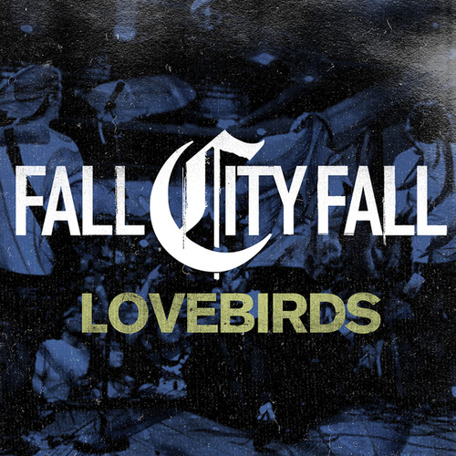 Play & Download Lovebirds by Fall City Fall | Napster