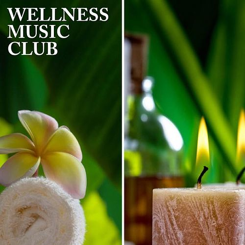 Play & Download Wellness Music Club by Various Artists | Napster