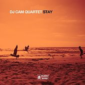 Stay by DJ Cam