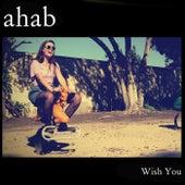 Wish You by Ahab