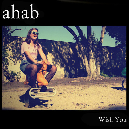 Wish You by Ahab