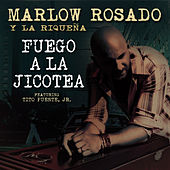 Play & Download Fuego A La Jicotea (feat. Tito Puente, Jr.) - Single by Andy Monta | Napster