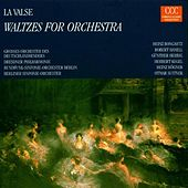 Play & Download Waltzes for Orchestra by Various Artists | Napster