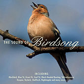 The Sound of Birdsong by Various Artists