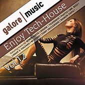 Enjoy Tech-House Vol. 12 by Various Artists