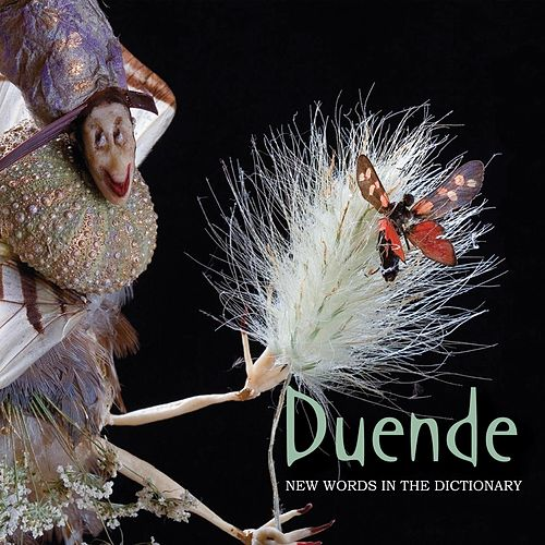 Play & Download New Words In The Dictionary by Duende | Napster
