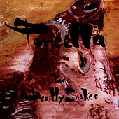 Play & Download Porcella by The Deadly Snakes | Napster