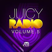 Play & Download Juicy Radio Volume 5 by Various Artists | Napster