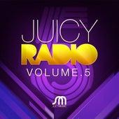 Juicy Radio Volume 5 by Various Artists