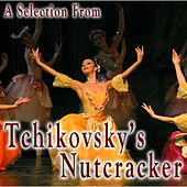 Play & Download A Selection from Tchaikovsky's Nutcracker by St Petersberg Kirov Orchestra | Napster