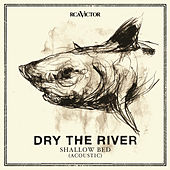 Play & Download Shallow Bed (Acoustic) by Dry The River | Napster