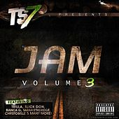TS7 Presents Jam Volume 3 by Various Artists