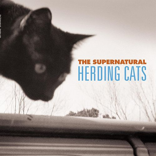 Play & Download Herding Cats by Supernatural | Napster