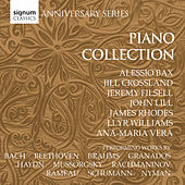 The Piano Collection by Various Artists
