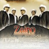 Entregate by Zaino