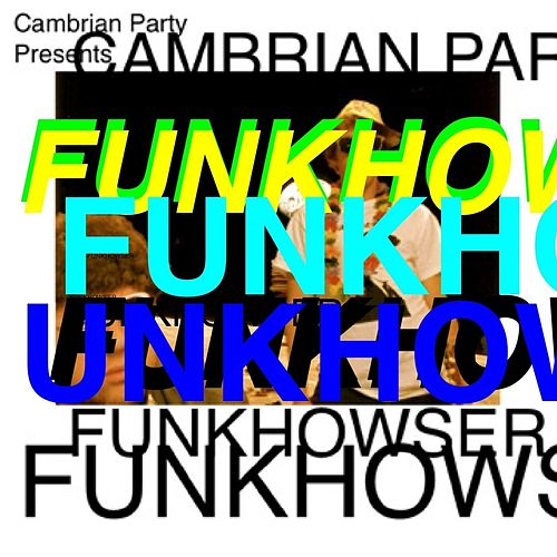 Funkhowser by Cambrian Party