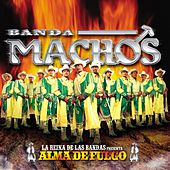 Play & Download Alma De Fuego by Banda Machos | Napster