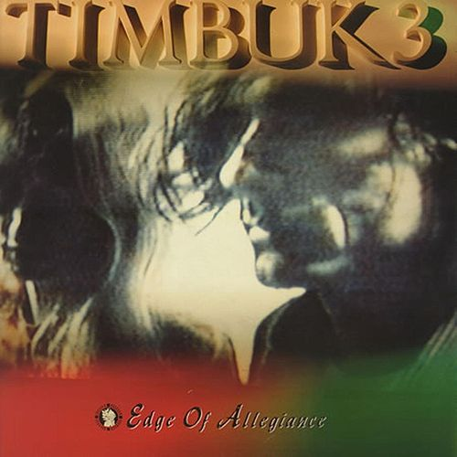 Edge Of Allegiance by Timbuk 3