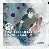 Organic Grooves LP by David Herrero