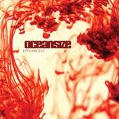 Effloresce by Oceansize
